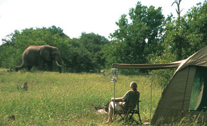 Tented Pioneer Botswana Vacations